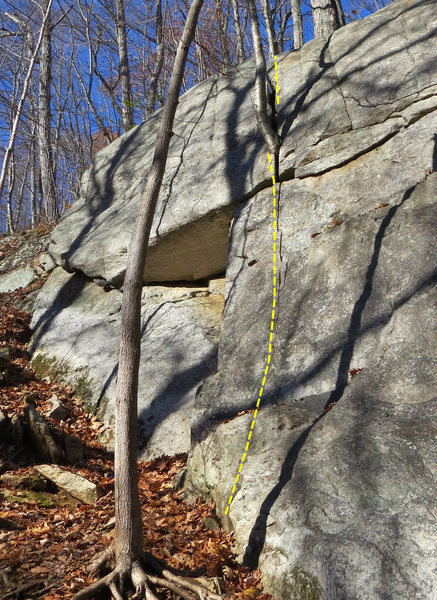 Rock Climbing Photo: Workout in the Woods