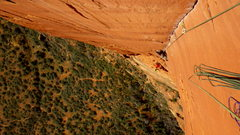 Rock Climbing Photo: Greg Troutman climbing the splitter perfect finger...