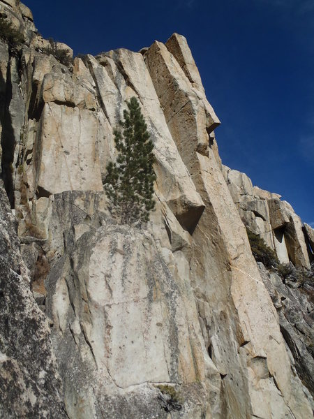 The almighty Hand of God (5.11+ 4p) follows the left-facing dihedral thru a dramatic roof for 2 glorious pitches. A Woodfords' classic in the highest sense.