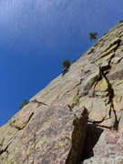 Rock Climbing Photo: Where the Zot Face diverges from the Great Zot.