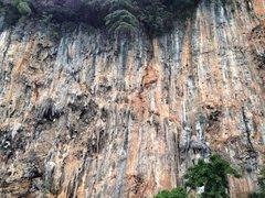 Rock Climbing Photo: Grateful Wall!