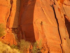 Rock Climbing Photo: anchors set ..