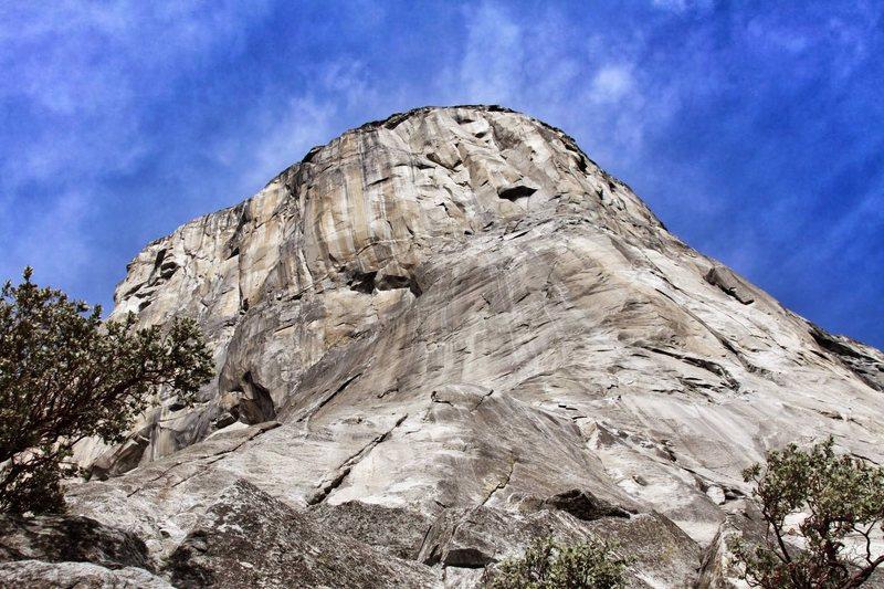 At the base of El Cap