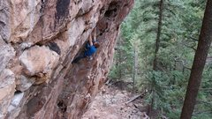 Rock Climbing Photo: Cody on the pumpy Zed's Dead.