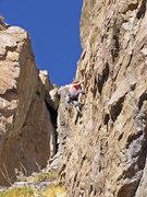 Rock Climbing Photo: Theresa Otto at the 7th bolt