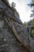 Rock Climbing Photo: View of the bolted slab wall.