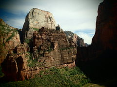 Rock Climbing Photo: The Great White Throne and The Organ from Touchsto...