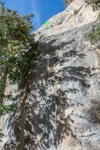 Rock Climbing Photo: the Tree is taking over the route