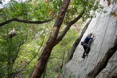 Rock Climbing Photo: Nicole climbs Sword in the Stone, on the Renaissan...