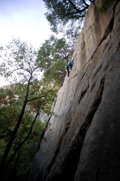 Kathleen nears the anchor of Sword in the Stone, on the Renaissance Crag in Rattlesnake Canyon.