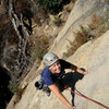 Nicole nears the top of Labrador Cupcakes, on the Fun in the Sun Wall in Rattlesnake Canyon.