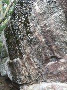 Rock Climbing Photo: Before pic.
