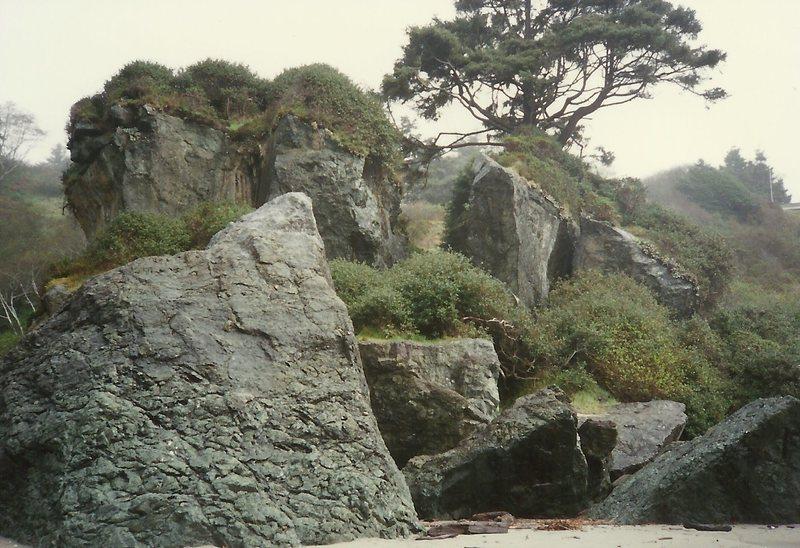 Rock Climbing Photo: sweet...