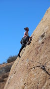 "Rock Climbing Photo: Surveying the bountiful knobs of ""Sexy Tracto..."