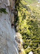 Rock Climbing Photo: Nick Layton making the move