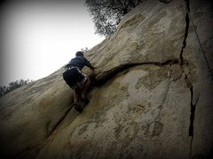 Rock Climbing Photo: Y-Crack, 5.7.  This was my first climb ever.