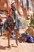 Rock Climbing Photo: indian creek rack 2