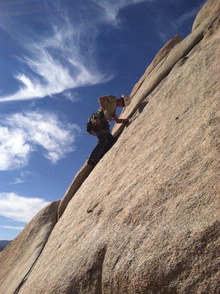 Rock Climbing Photo: Bill P on Toe Jam.
