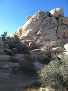 Rock Climbing Photo: Steve Thomas leading the Flue.