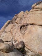 Rock Climbing Photo: Jason Partin leading Sexy Grandma.