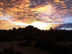 Rock Climbing Photo: Sunset, Joshua Tree NP.