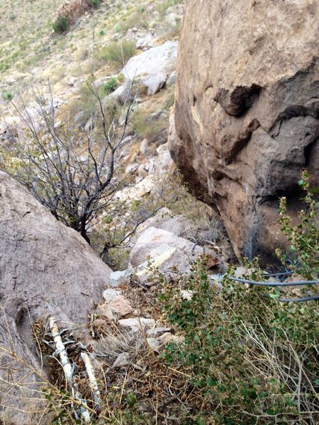 If you take the blue line on topo, you'll end up in a much overgrown, steep gully full of large boulders and very loose rock. Very hard to negotiate. Photo Cheryl Bare.