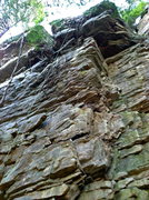 Rock Climbing Photo: Lounge Lizard