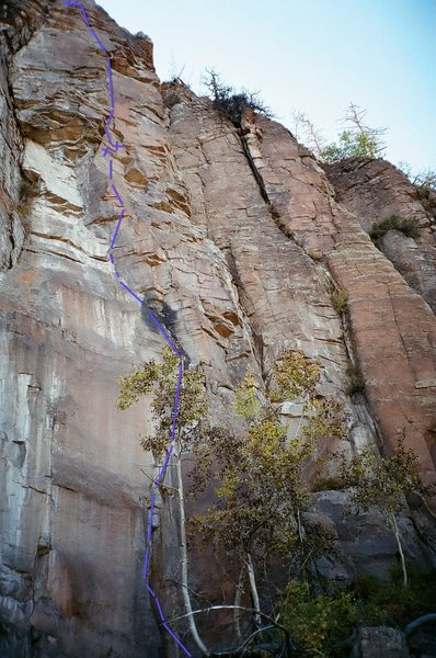 Rock Climbing Photo: Fun new line in Planet of the Apes