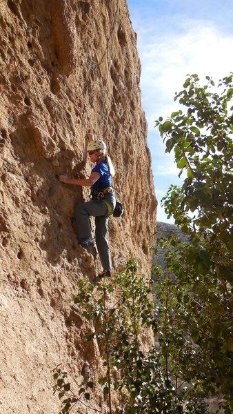 "Rock Climbing Photo: Near the beginning of ""Lonestar."""