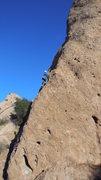 Rock Climbing Photo: Dixieland