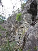 Rock Climbing Photo: White line middle section.