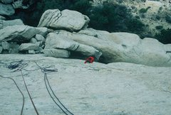 Rock Climbing Photo: Anne following Walk on the Wild Side, Saddle Rock,...