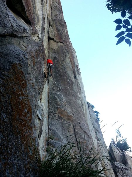 Adam Growing Cracks. Pitch 1.