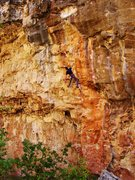 Rock Climbing Photo: Jordon Griffler on the send of Map of Japan.
