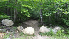 Rock Climbing Photo: Trail head for Shagg Crag.  This is on the right a...