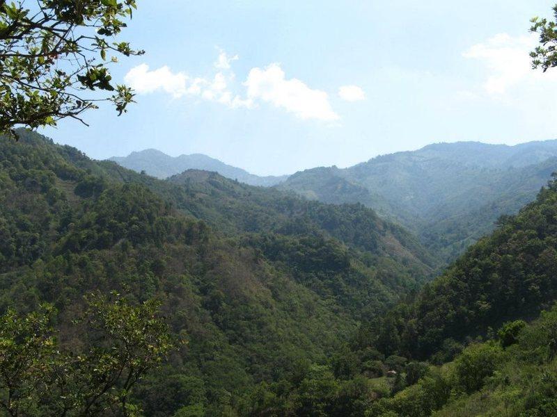 On an abandoned road down the Eastern ridgeline of El Pital, in Chalatenango, El Salvador.