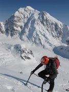 Rock Climbing Photo: The North Buttress of Mount Hunter from Mount Fran...