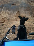 Rock Climbing Photo: Pulling a mantle off of a bike handle up Slab Rout...