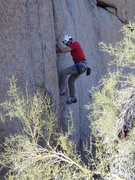 Rock Climbing Photo: Jammin on 'Two cams & jam'