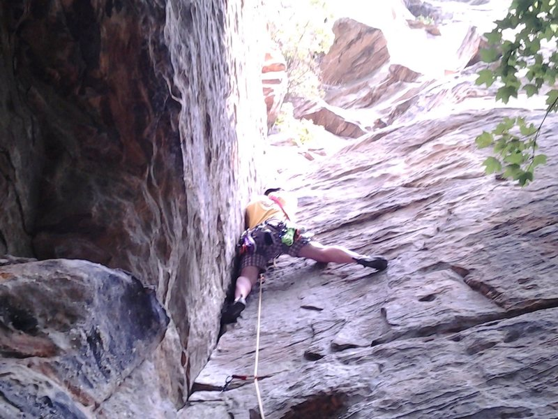 Leading Calypso II. Got swarmed by bees and had to bail after convincing my friend to quickly clean the bolted anchors. Good route to start trad on, awesome pro.