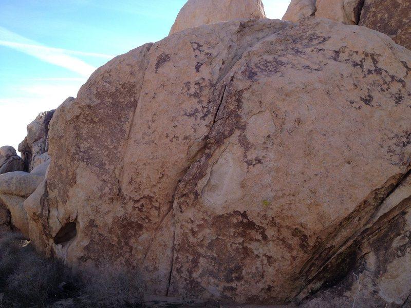 Rock Climbing Photo: #19 jtree
