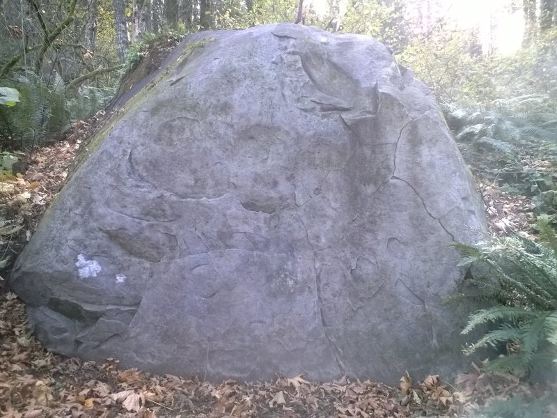 Crimpy little 6' boulder.