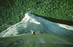 Rock Climbing Photo: Flight of the Albatross