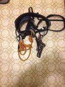 Rock Climbing Photo: 8mm rope vs PAS folded