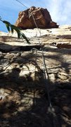 Rock Climbing Photo: King Snake