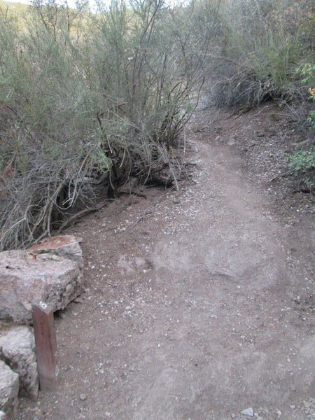 Rock Climbing Photo: Climber's trail for Northern approach to The Yaks ...