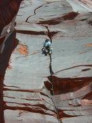 "Rock Climbing Photo: #3.5""s"