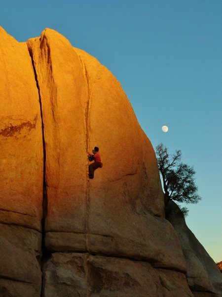 Rock Climbing Photo: Pinched Rib at the end of another perfect day in J...