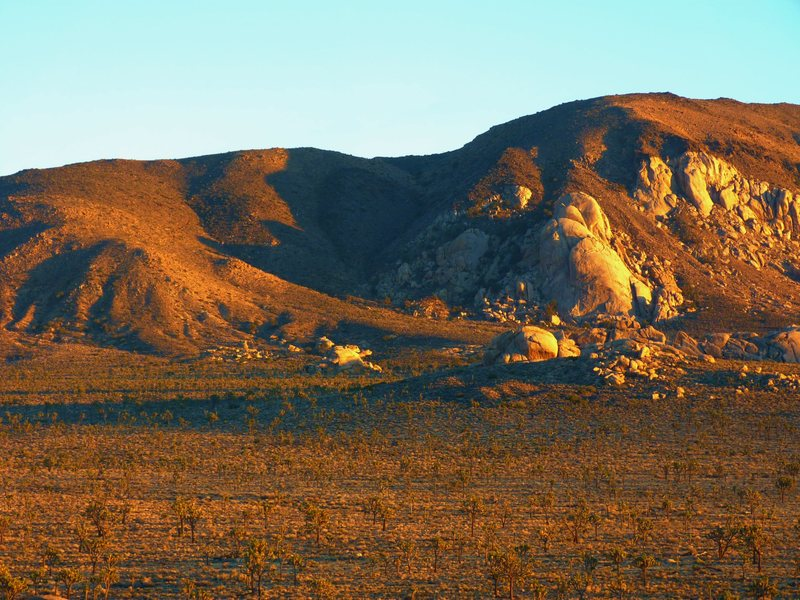 Rock Climbing Photo: Saddle Rock