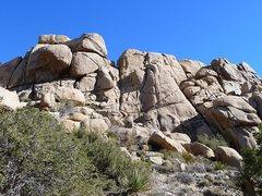 Rock Climbing Photo: The Gold Nuggets, Joshua Tree NP